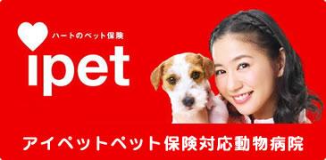アイペット保険対応動物病院